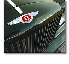 Automotive badge - radiator grille