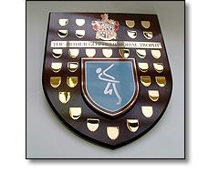 Perpetual shield
