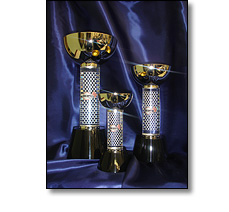 Rally car racing trophies