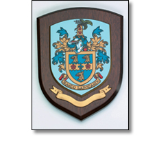 Wooden council shield