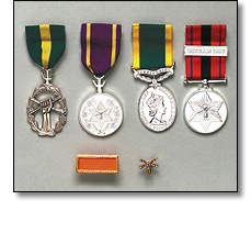 Various Military medal on a short ribbons
