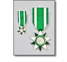Military medal on a short ribbon with miniature