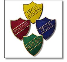 School S6 title badges