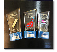 Acrylic achievement awards for advertising